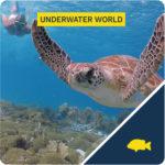 underwater world tour